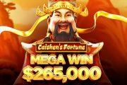 Another Huge Win in Bitcoin Casino. Bitstarz Casino Player Wins $265.000