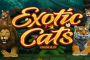 Exotic Cats slot. New Slot Release By Microgaming